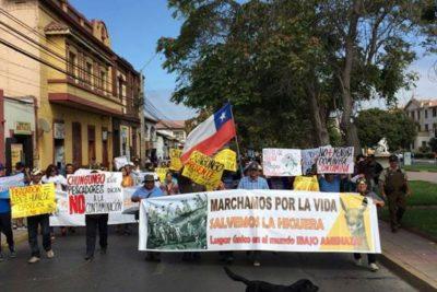 Oceana apoya decisión del Ministerio del Medio Ambiente de no entrar en proceso de conciliación por proyecto Dominga