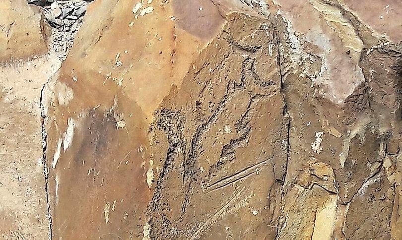 Dañan antiguos petroglifos ubicados en Caldera