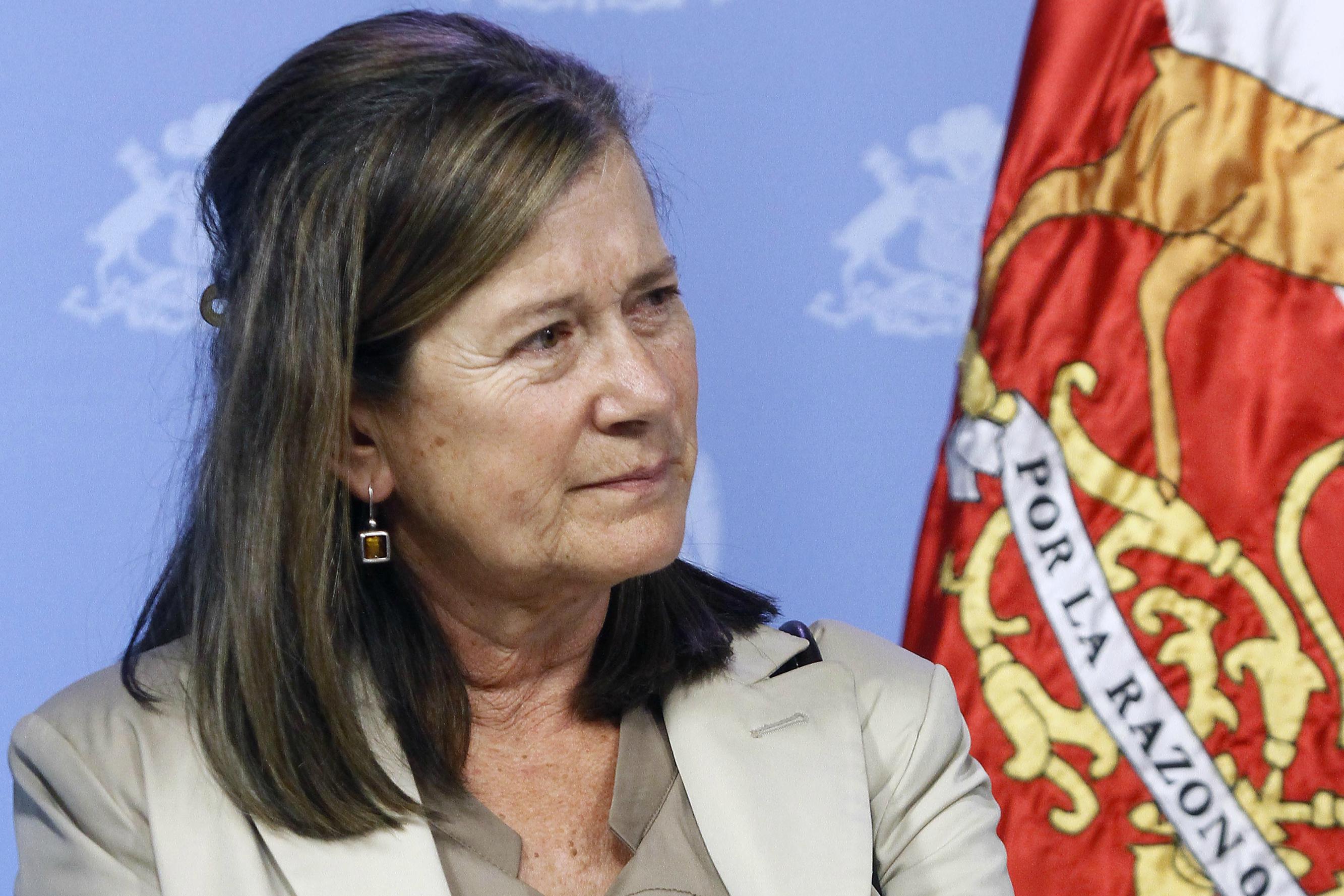 Quién es Susana Tonda, la ejecutiva de confianza de Piñera que asumirá como Directora Nacional de Sename