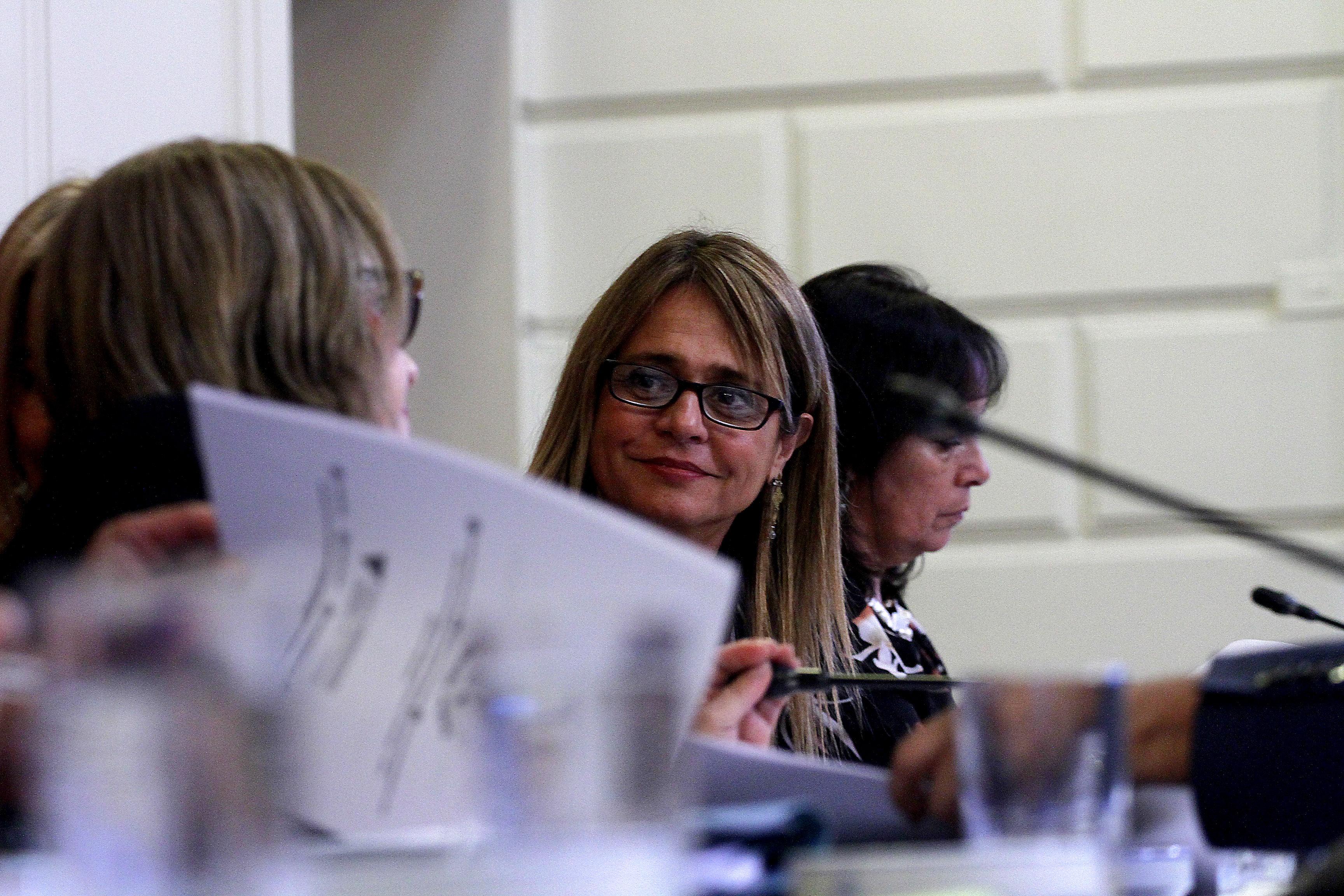"""""""Comisión mixta aplaza otra vez el debate por Identidad de género y proyecto podría ser despachado en junio"""""""