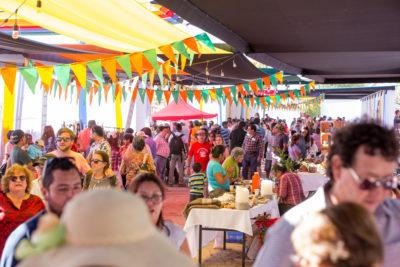 Vendimia 2018: la fiesta de Toconao