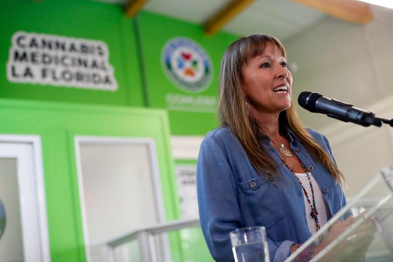 """Fundación Daya califica de """"sospechoso"""" estudio contra la cannabis medicinal"""