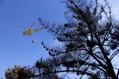 Se reactiva incendio forestal en Cerro Manquehue: el quinto de la temporada