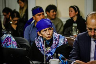 Machi Francisca Linconao y Héctor Llaitul comparecen ante comisión investigadora de Operación Huracán