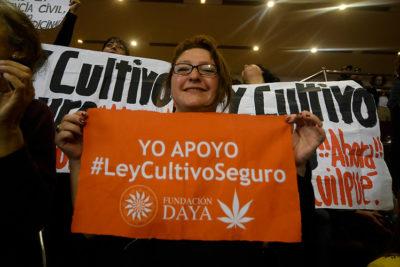 Cámara de Diputados aprueba el proyecto que regula el uso medicinal de la cannabis