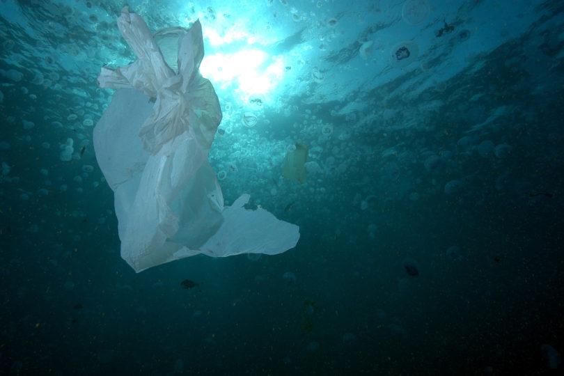 Encuentran residuos de plástico en profunda y difícil zona de acceso del océano