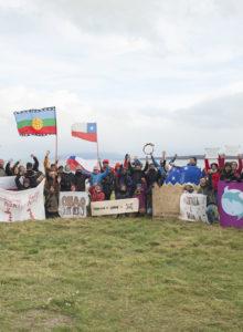Greenpeace advierte impacto ambiental de la futura planta salmonera en Puerto Natales