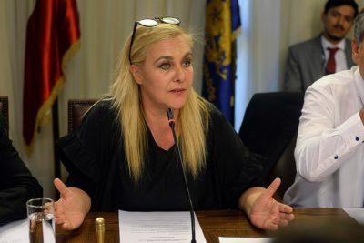 Comisión de Familia aprueba indicación que permitiría la adopción homosexual