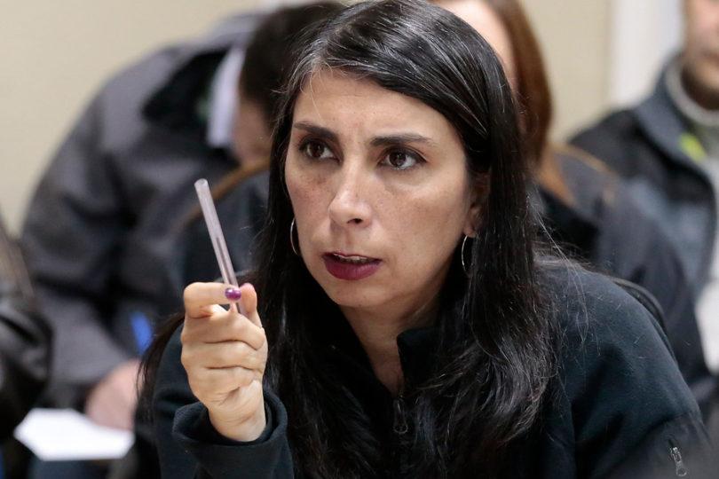 Acogen querella de intendenta Rubilar en contra de dirigente del Instituto Nacional