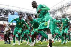 VIDEO |Hinchada de Senegal se ganó la admiración del mundo: celebró triunfo limpiando el estadio