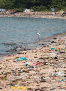 """Greenpeace en Día Mundial del Medioambiente: """"La gran batalla que hoy enfrenta la humanidad es derrotar al plástico"""""""