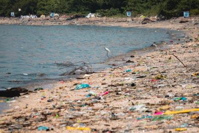"""Greenpeace hace alarmante análisis: desde mañana la humanidad entrará en una etapa de """"sobregiro medioambiental"""""""