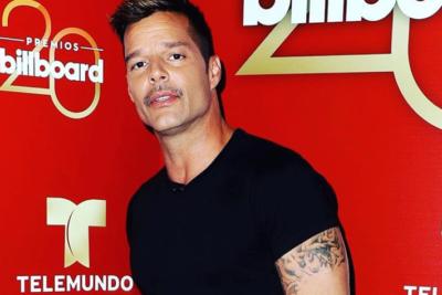 """Ricky Martin: """"Mis hijos son demasiado jóvenes, pero me gustaría que fueran gay"""""""