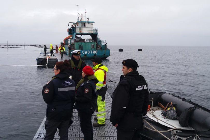 SMA solicita al Tribunal Ambiental autorización para detención del centro de cultivo de salmones tras fuga