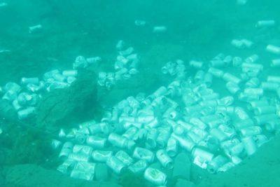 Descubren basural de latas de cerveza en el fondo del Lago Llanquihue