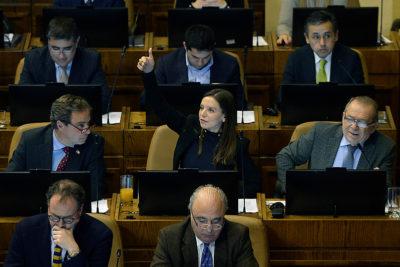 Cámara de Diputados rechaza proyecto de Camila Flores de reponer la pena de muerte