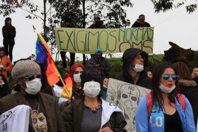 Departamento del Medioambiente del Colegio Médico critica fin de alerta amarilla en Quintero