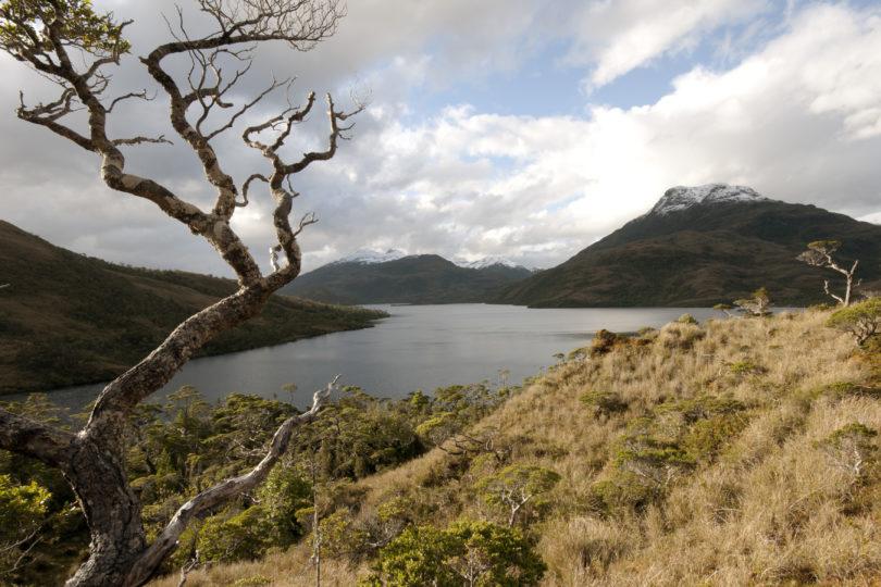 Servicio de Evaluación Ambiental autoriza uso de tronaduras en mina Invierno de Isla Riesco
