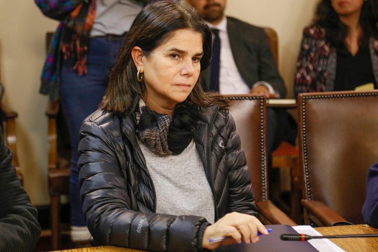 """""""Cámaras y timbres en vagones del Metro: presentan proyecto para registrar casos de acoso"""""""
