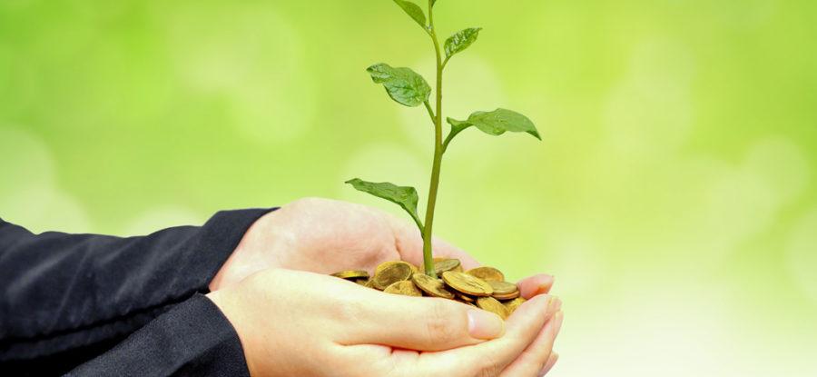 Avanzar hacia la sustentabilidad