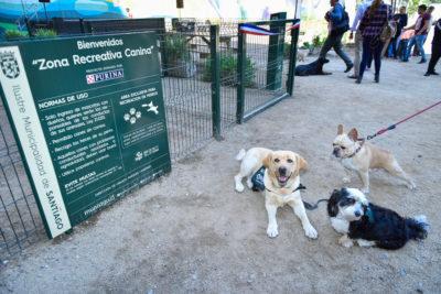 Comuna de Santiago inaugura en la Plaza de Bolsillo de Santo Domingo su primera zona recreativa para perros