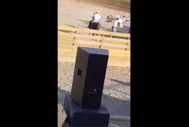 VIDEO |Acusan brutal maltrato animal a caballo en medialuna de Calle Larga