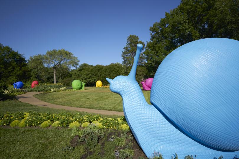 Desde caracoles a un pájaro carpintero: animales gigantes se tomarán el festival Hecho en Casa Entel