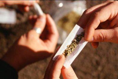 Parlamentarios de oposición reimpulsarán despenalización total de la marihuana