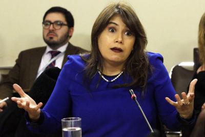 """Presidenta de CDE: Javiera Blanco fue """"elemento perturbador"""" para funcionamiento"""