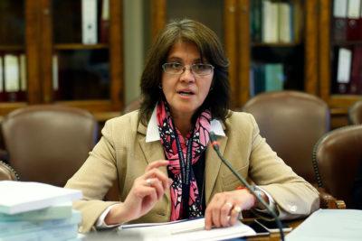 Río Silala: agente chilena espera que demanda avance rápido en La Haya