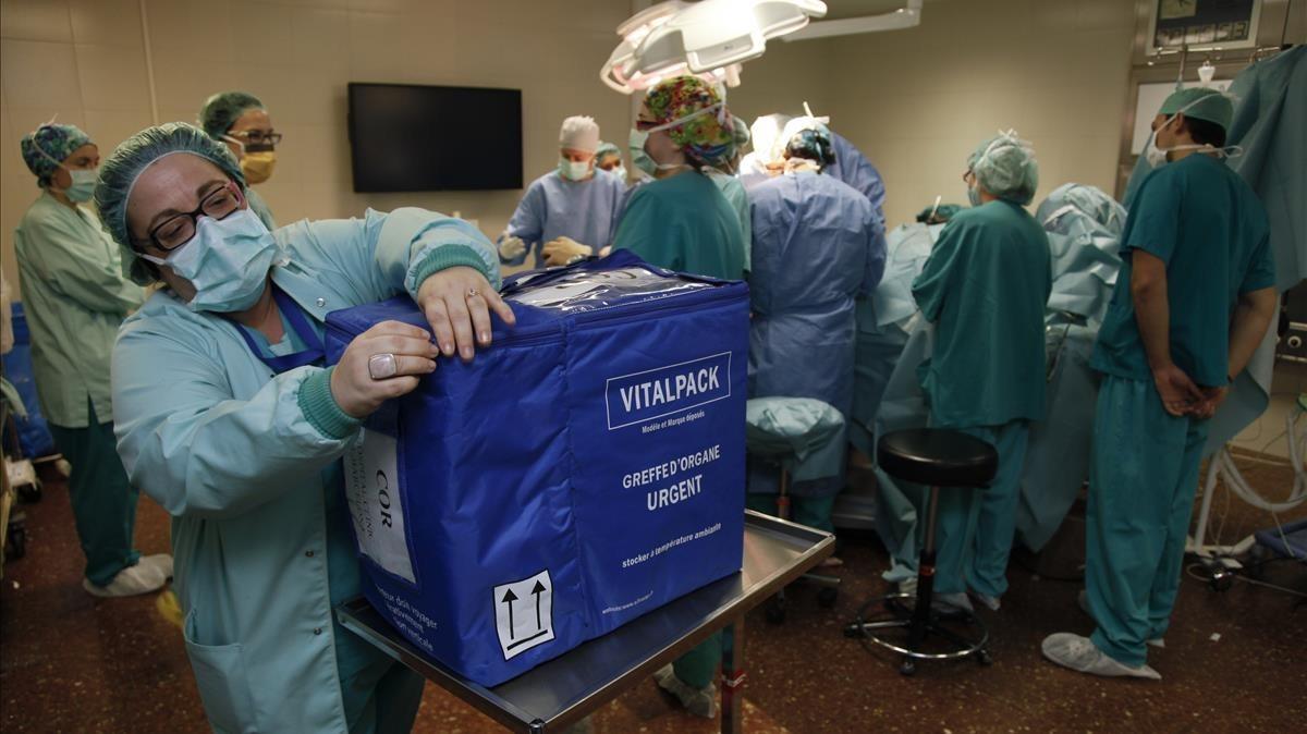 """""""Transplantes disminuyen tras baja de 33% en donaciones de órganos"""""""