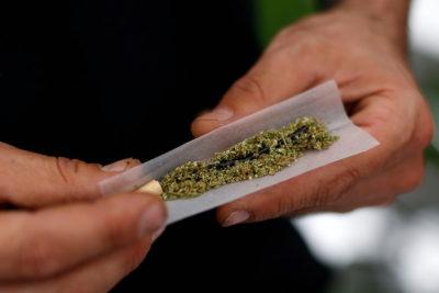 """Director de Senda: """"Nosotros no vamos a legalizar la marihuana"""""""