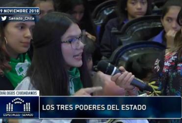 Alumna del Liceo 7 emplaza a Hernán Larraín por muerte de Catrillanca