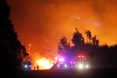 Región de Aysén lleva más de 11 mil hectáreas consumidas por incendios forestales