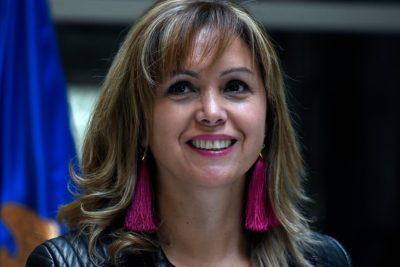 """Bancada PPD apunta a Chadwick """"por la responsabilidad política"""" en La Araucanía"""