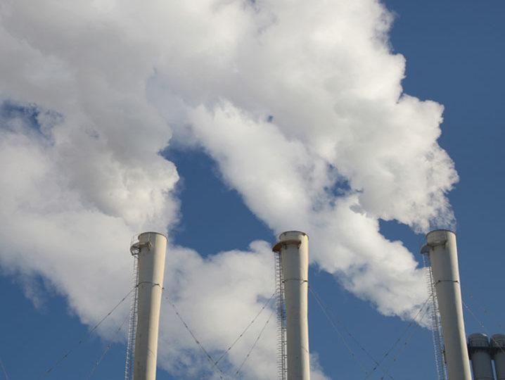 """WWF por compromiso climático de Chile: """"Es imprescindible que el carbón salga de la matriz energética"""""""