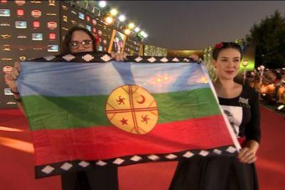 """""""Son comunistas y apoyaron al gobierno anterior"""": creador de la bandera mapuche critica performance de Vallejo y Cariola"""