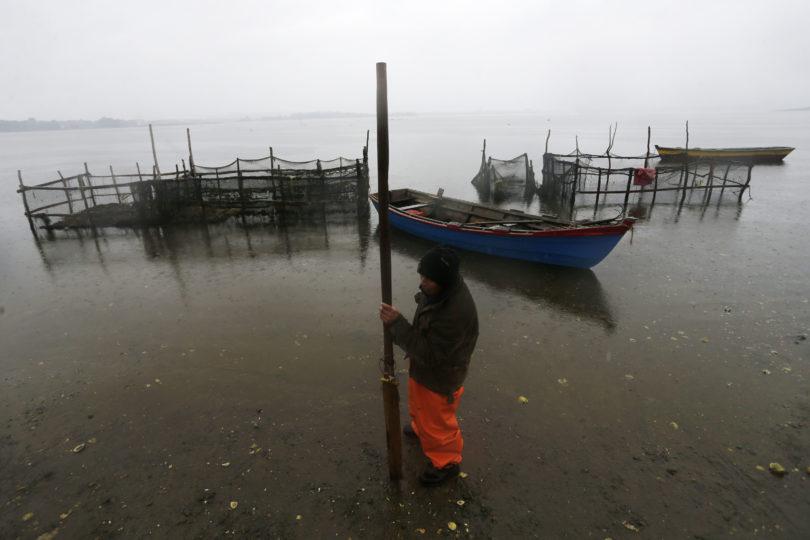 Corte de Apelaciones de Puerto Montt traslada a Valparaíso el caso de vertimiento de salmones en Chiloé