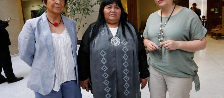 """""""Ignorantes y vulgares diputados de Chile Vamos"""": el incidente en la interpelación a Chadwick que enfureció a Carmen Hertz"""