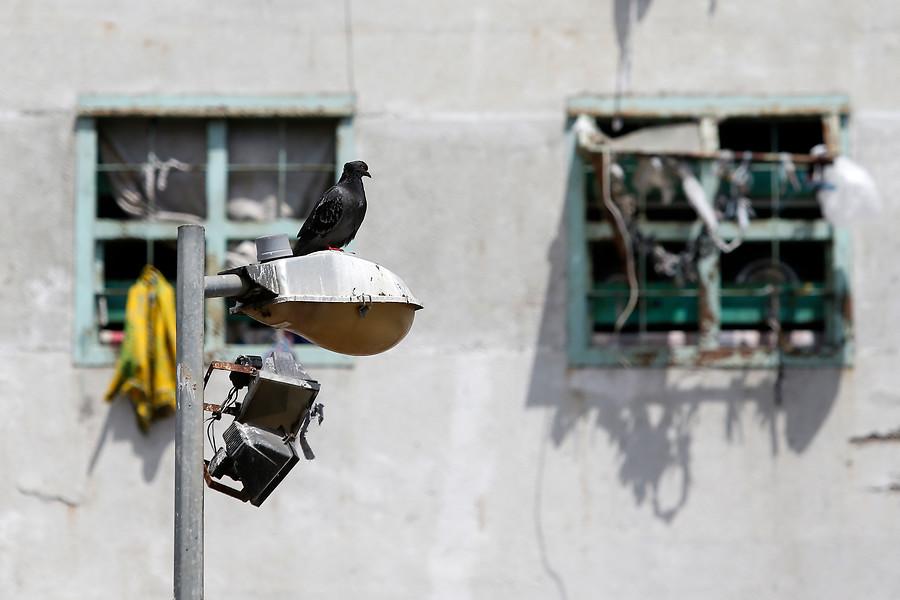 """""""Cárceles en Chile: 39% de los reos dice haber sufrido violencia física por parte de funcionarios"""""""