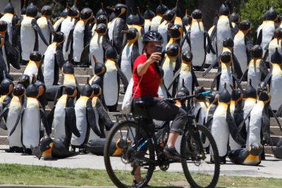 Mil pingüinos de material reciclado sorprenden en Plaza Italia