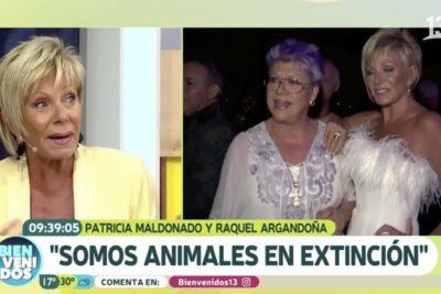 """Raquel Argandoña enfrenta al panel de Bienvenidos por Maldonado luego que le dijeran que """"hizo apología a la violencia"""""""