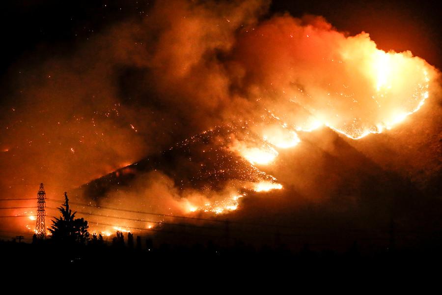 """""""Más de 20 hectáreas ha consumido incendio forestal en Pichilemu"""""""