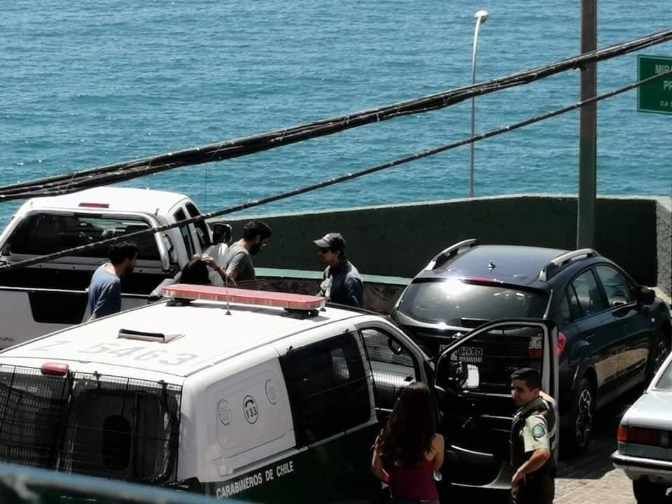 Impactante relato de testigo de la muerte de perrita encerrada seis horas en un auto en Viña del Mar