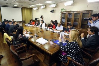 Comisión despachó reforma que establece adopción homoparental