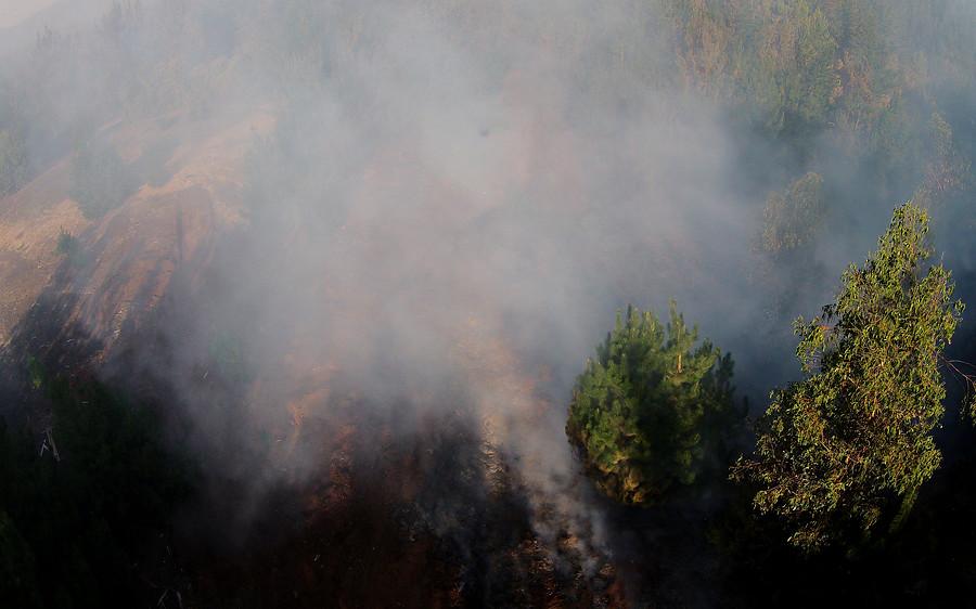 Gobierno pide a la ciudadanía mayor apoyo para prevención de incendios