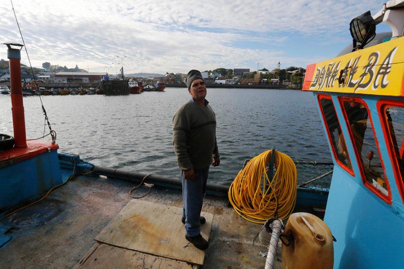Autorizan la pesca del salmón chinook en tramo de 6,8 kms del río Toltén