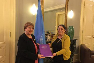 Directora del INDH presenta informe a la ONU sobre situación de los DD.HH. en Chile