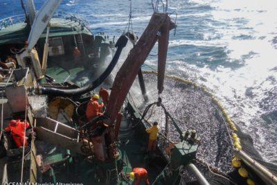 Nueva ley entrega atribuciones a Sernapesca para combatir pesca ilegal
