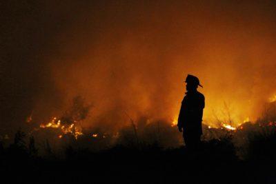 Conaf reportó 108 incendios forestales a nivel nacional